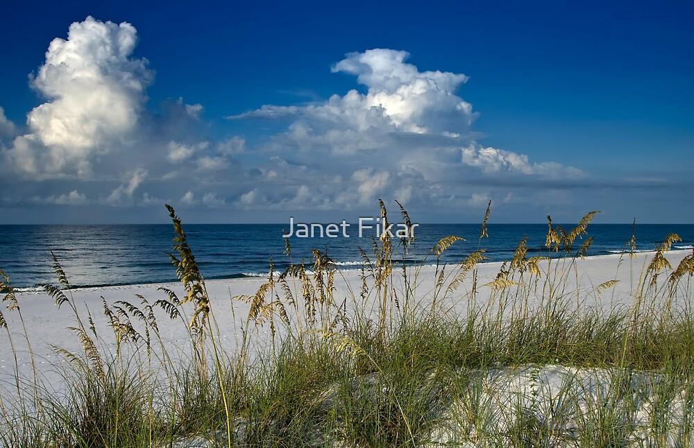 Coastal Bliss by Janet Fikar