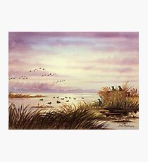 The Duck Hunters Companion Photographic Print