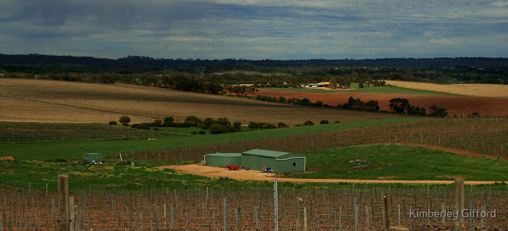 Barossa Colours by Kimberley Gifford
