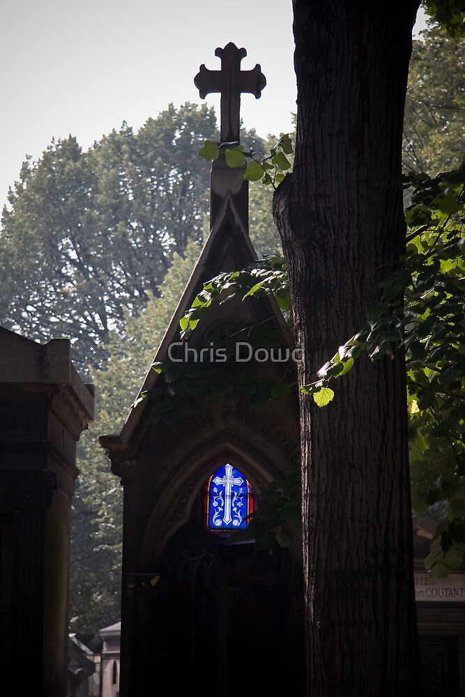 Light of my life by Chris Dowd