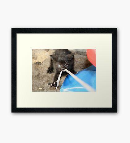 Grrrrr....Grrrr....Give Me That!!! Framed Print