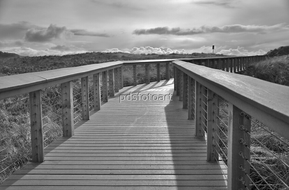 Walkway at the Oregon Coast. by pdsfotoart