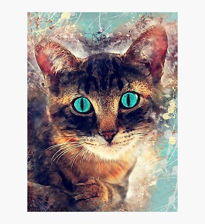 cat art 3 #cat Photographic Print
