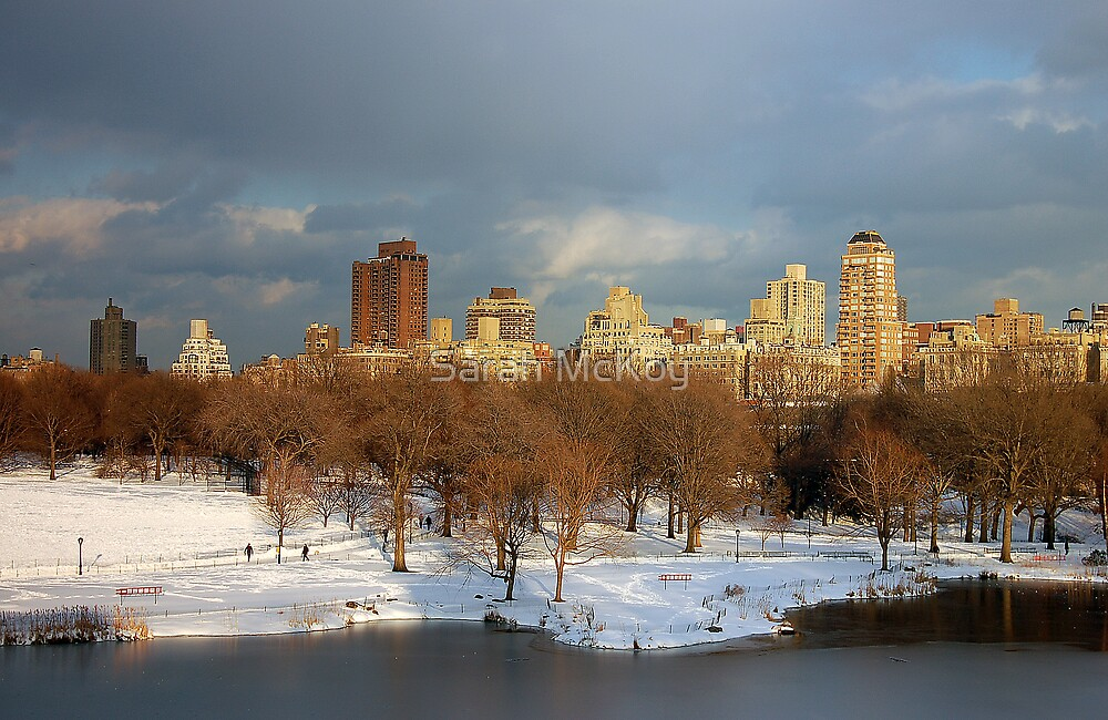 Central Park View by Sarah McKoy