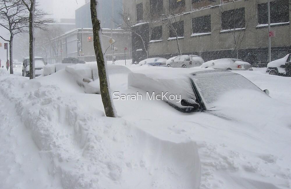 Snow Cars Somewhere by Sarah McKoy