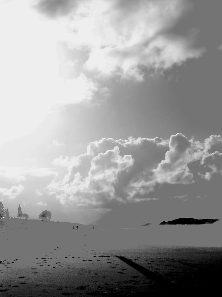 beach art by lauralock