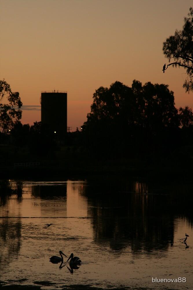 Sunset Love Birds by bluenova88