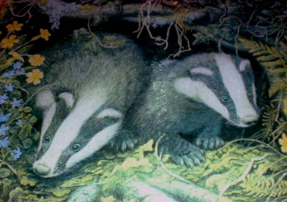 Badgers by GEORGE SANDERSON