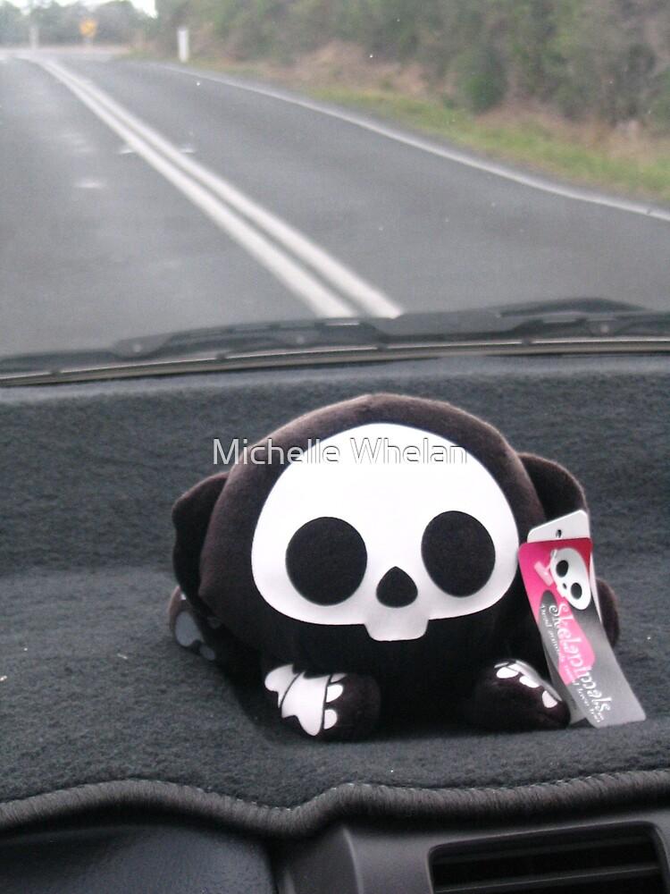 monkey in the car by Michelle Whelan