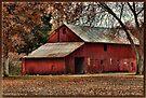 Old Red by Sheryl Gerhard