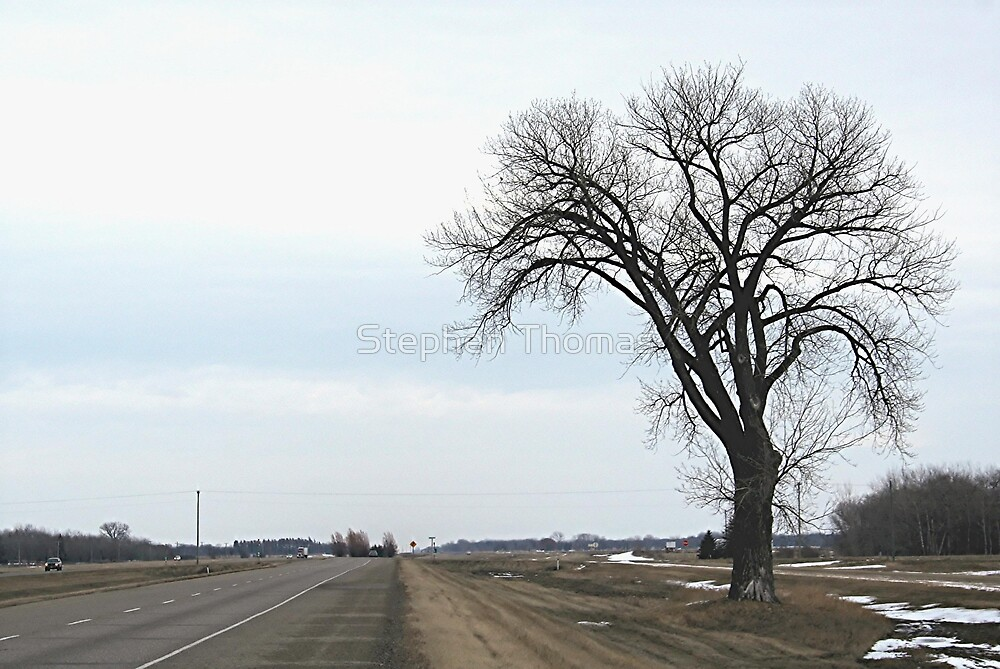 Quot The Half Way Tree Between Winnipeg Amp Brandon Mb Quot By