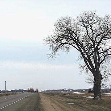 The Half Way Tree (between Winnipeg & Brandon MB) by stephenralph