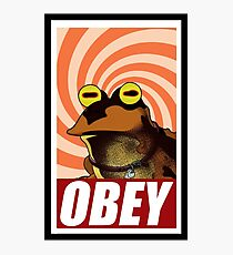 obey hypnotoad frog crazy funny humor  Photographic Print