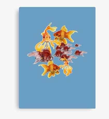 Freshwater Aquarium Canvas Print