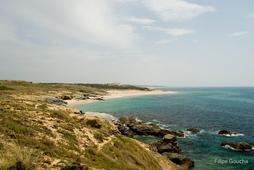 Praia da Ilha do Pessegueiro by Filipe Goucha