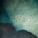 exodus - sky full of birds by Dirk Wuestenhagen