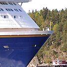 Ship o'hoi - see larger by julie08