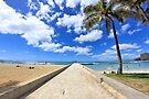 Waikiki Wall by DJ Florek