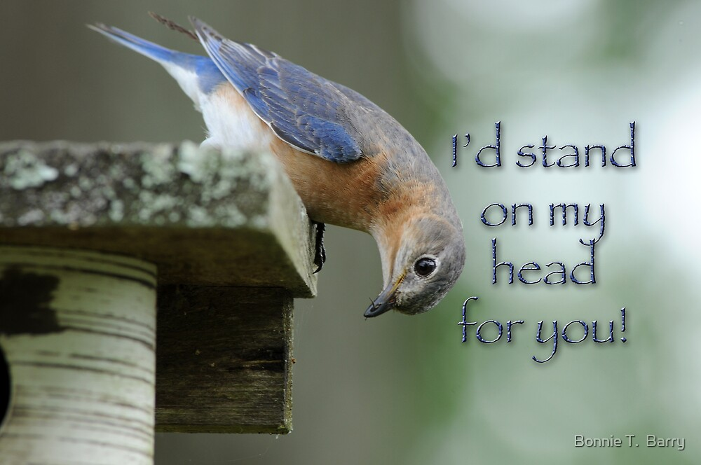 I'd stand on my head for you by Bonnie T.  Barry
