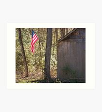 Land of the Free, Home of the Brave Art Print