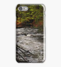 Spring Stream in Woods iPhone Case/Skin