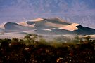 Sculptured  Dunes by Varinia   - Globalphotos