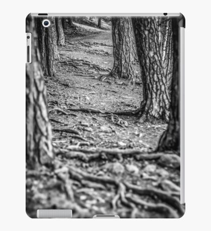Rootway 2012 - black edition iPad Case/Skin