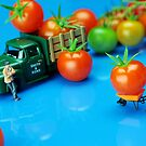 Tomato Business by Paul Ge