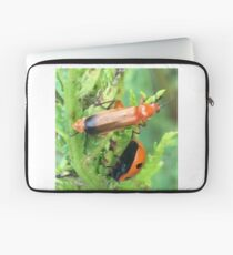 Soldier beetle Vs Ladybird Who Won? Laptop Sleeve