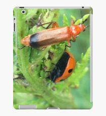 Soldier beetle Vs Ladybird Who Won? iPad Case/Skin
