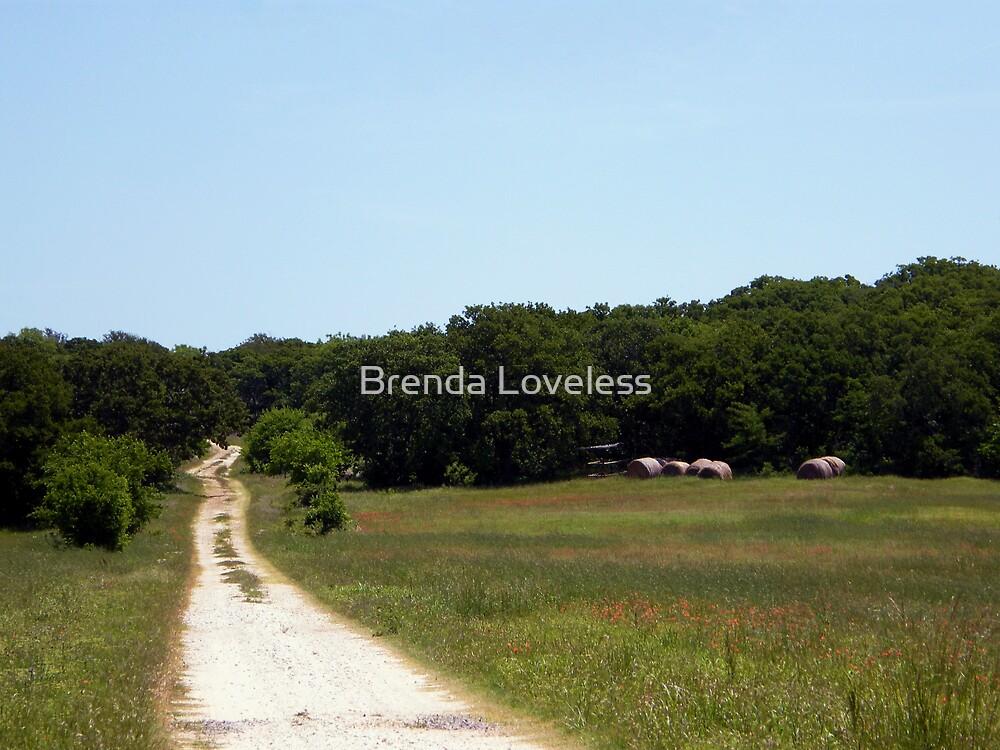 rock hill lane by Brenda Loveless