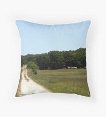 rock hill lane Throw Pillow