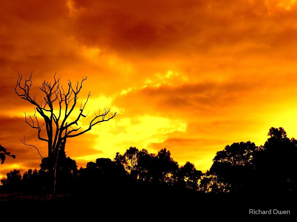 Apocalypse Now by Richard Owen