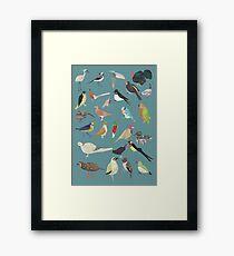 Oiseaux Alphabetiques -  A to Z birds - papercuts Framed Art Print