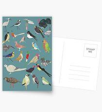 Oiseaux Alphabnitiques - A bis Z Vögel - Papercuts Postkarten