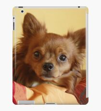Richie iPad Case/Skin