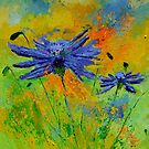 two cornflowers by calimero