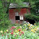 Little Barn by Marriet
