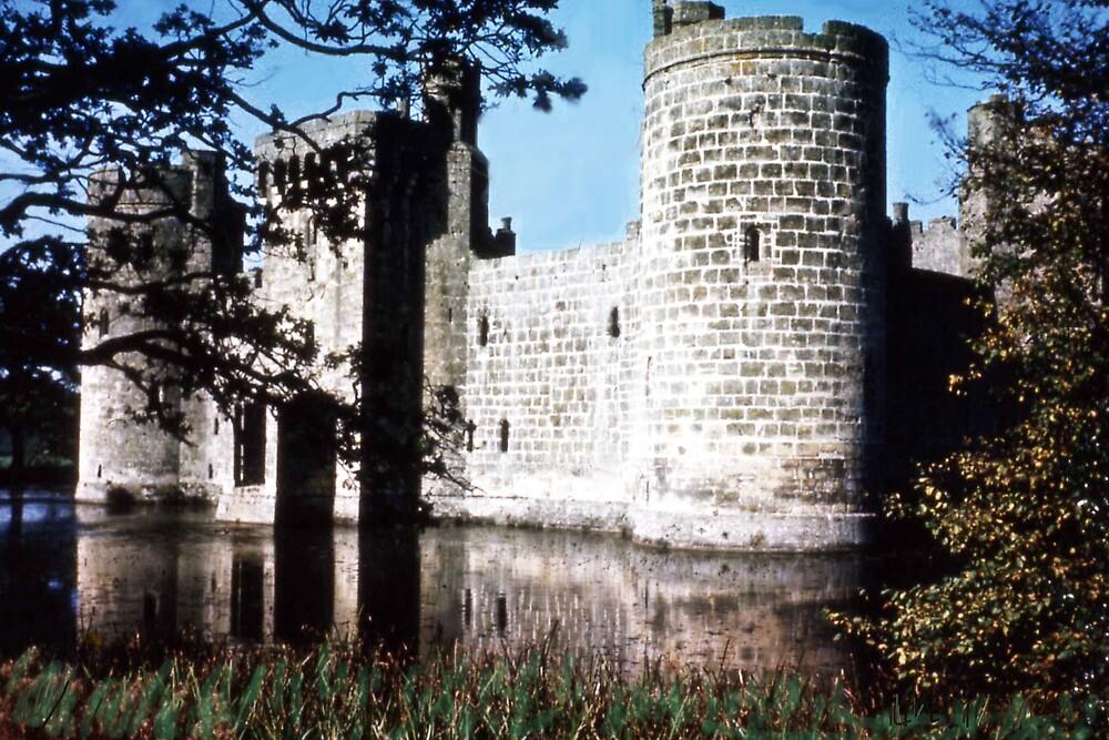 Carnarvon Castle by MayWebb