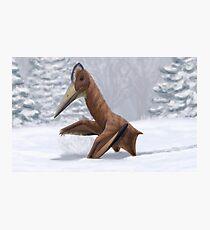 Pterosaur Snow Day Photographic Print