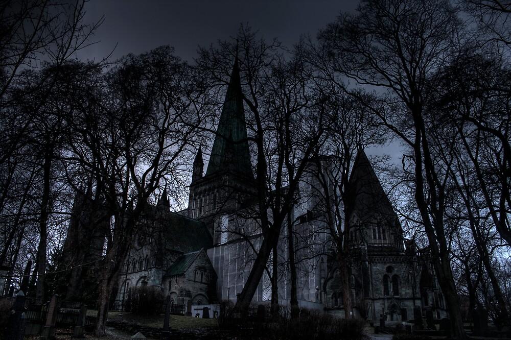 The Nidaros Cathedral by Bjørn Hovland Børve