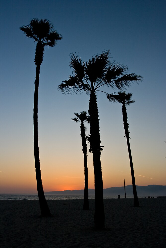 California Dreaming by Chris Putnam