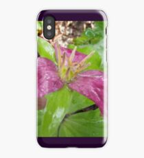 purple trillium #4 iPhone Case/Skin