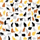 Colorful Cats by EthosWear