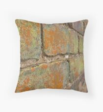 Multi-Colored Brick Throw Pillow