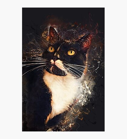 cat Jagoda #cat #kitty Photographic Print