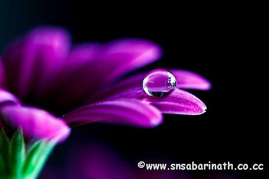 beauty of water drop by snsabarinath