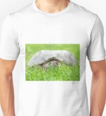 The Turtle Stare T-Shirt