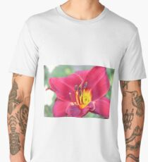 Red Lily Up Close Men's Premium T-Shirt