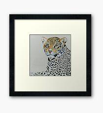 Lonley Leopard Framed Print